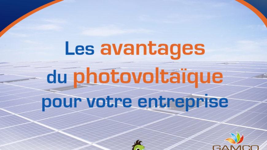 Les avantages du photovoltaïque  Pour votre entreprise